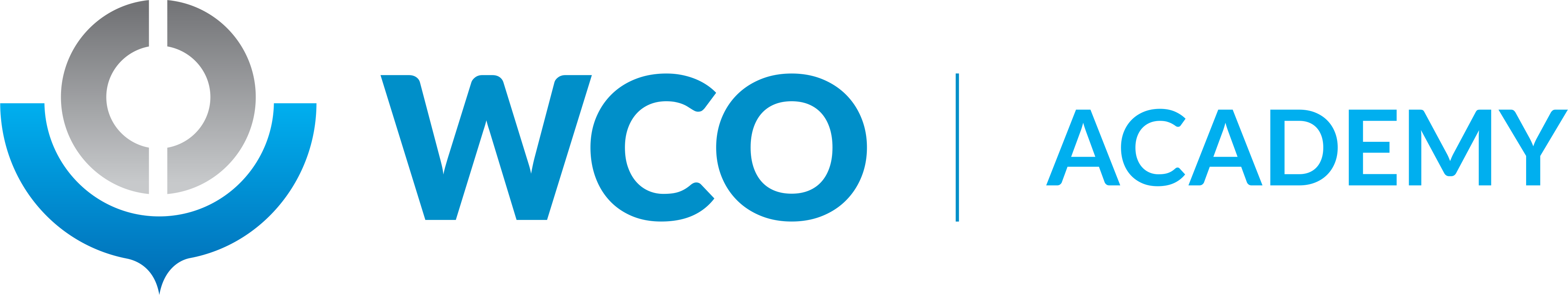 WCO Academy Logo